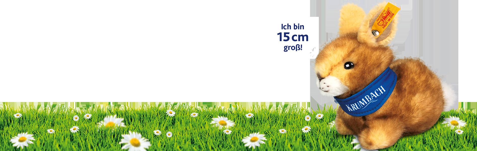 Krumbach Plüsch-Frosch 16cm